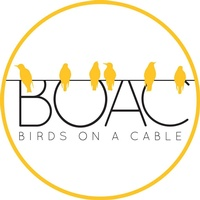 Birds on a Cable