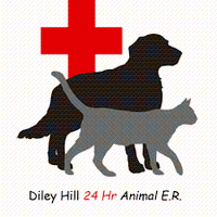 Diley Hill Animal Emergency Center