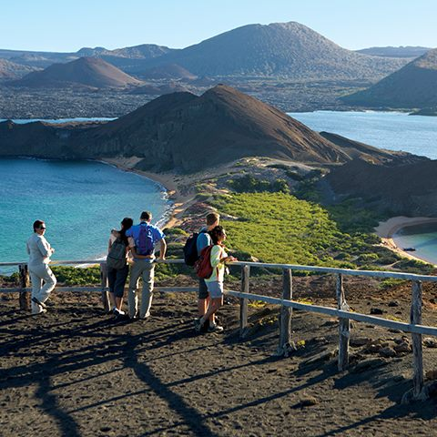 From 5-star accommodations in Quito to award-winning shore excursions guided by expert naturalists, Celebrity Cruises will exceed your expectations with their all-inclusive Galapagos experience.