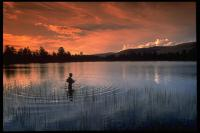 Gallery Image West%20Greens%20Lake%20Fishing.JPG