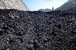 Black Butte Coal Company