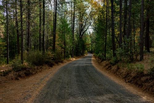 Bear Creek Road