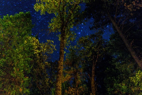 Starry night at Lodge