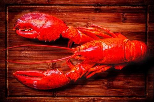 Gallery Image lobster_100321-102335.jpg