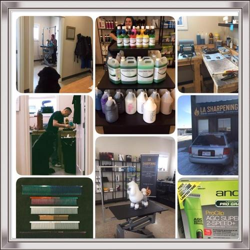 Gallery Image 23754844_790952614421627_1031276190470677463_n.jpg