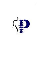 Pacheco Spine & Sport