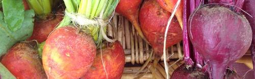 Gallery Image veggies.jpg
