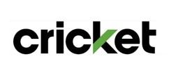 Gallery Image Cricket.jpg