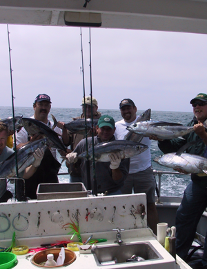 Gallery Image pacific%20salmon%206.png