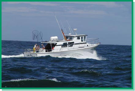 Gallery Image tackle%20time%20charters%203.jpg