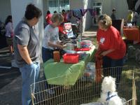 We love our pets at Charles Maund Toyota!