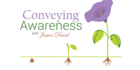 Conveying Awareness