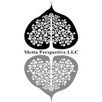 Metta Perspective LLC