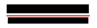 Star Nissan Inc.