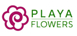Playa del Rey Florist and Gifts