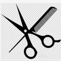 Silver Scissors