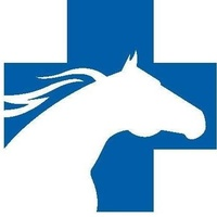 Brazos Valley Equine Hospitals