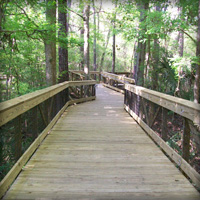 Gallery Image prca-boardwalk.jpg