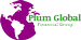 PLUM GLOBAL FINANCIAL GROUP LLC*