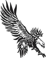 Eagle Eye Engraving