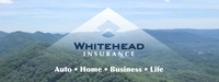 WHITEHEAD INSURANCE GROUP INC