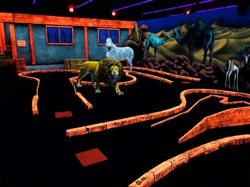 Gallery Image safari-02.jpg
