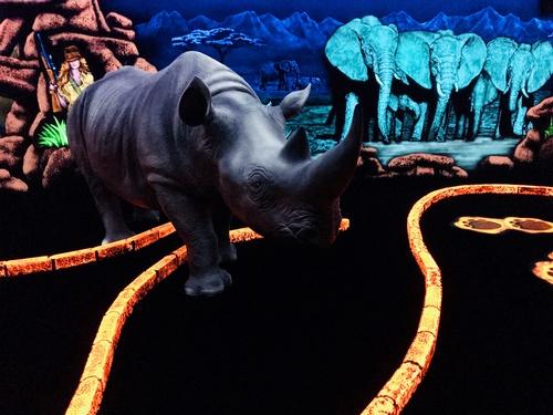 Gallery Image safari-1.jpg