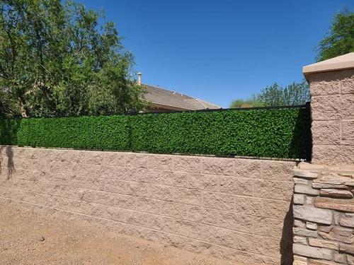 Gallery Image hedge%20works%203.jpg