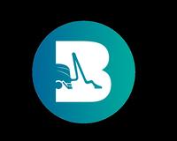 Bernie's Carpet Cleaning LLC