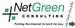 NetGreen Consulting, Inc