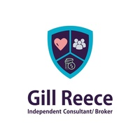 Alliance Financial - Gill Reece