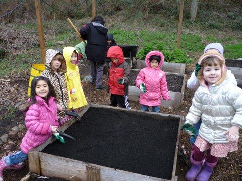 planting our garden box.