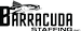 Barracuda Staffing and Consulting