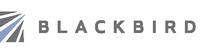 Blackbird Investments