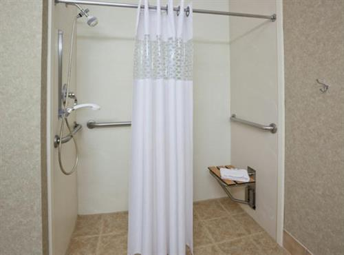 handicap roll-in shower