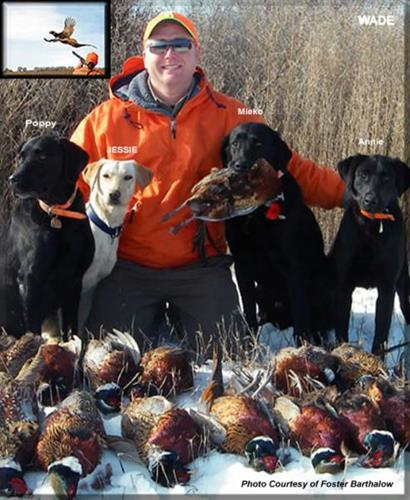 Gallery Image Hunters%20Dream%20Pheasant%20Hunts.jpg