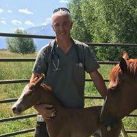 Double Arrow Veterinary Clinic PC