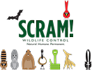 Ohio Wildlife Center / SCRAM! Wildlife Control