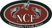 Noontootla Creek Farms