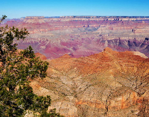 Gallery Image Yavapai%20Grand%20Canyon.PNG