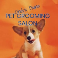 Cindy's Divine Pet Grooming Salon