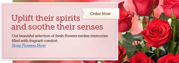 Gallery Image banner-home-1-flowers_y86gnf.jpg