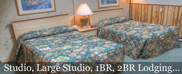 Gallery Image header5.jpg