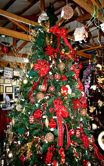 Gallery Image Red%20and%20Gold%20Tree%201.jpg