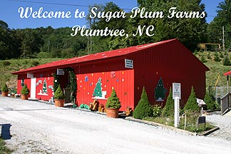 Gallery Image welcome%20to%20sugar%20plum%20farms2.jpg