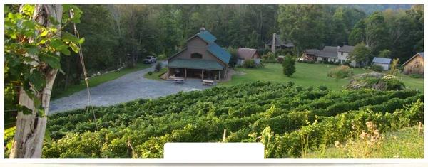 Gallery Image slider1-north-carolina-vineyard-winery.jpg