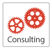 Gallery Image SolutionsConsulting.png