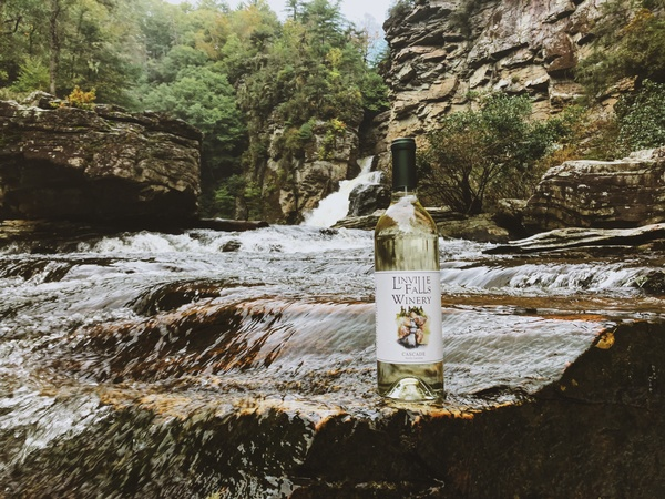 Gallery Image Cascade%20Bottle%20at%20Linville%20Falls%20_%20Jessica%20Wiseman.JPG