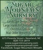 Sugar Mountain Landscape Contractors / Sugar Mountain Nursery