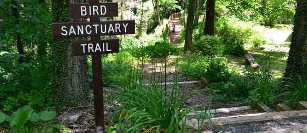 Gallery Image bird-trail.jpg